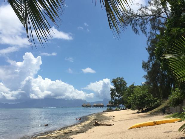 Une nouvelle étude en Polynésie française !